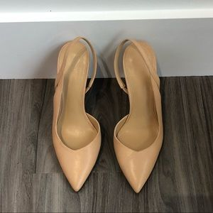 Nude Ankle Strap Pointy Toe Pumps